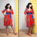 Dianne-wrap-dress-birdlife.200