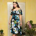 53 RUMBA RUFFLE DRESS grandiflora.200